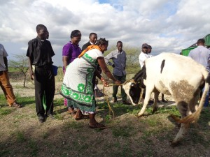 woman happy to get cow